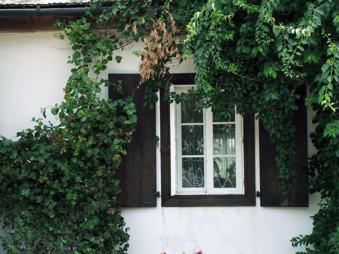 Drevené okno na dome s bielou fasádou.jpg